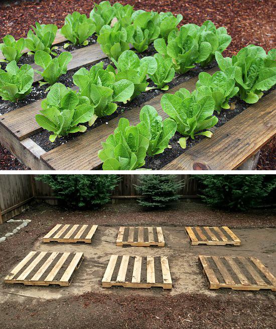 Επαναχρησιμοποίηση παλετών για μικρές καλλιέργειες