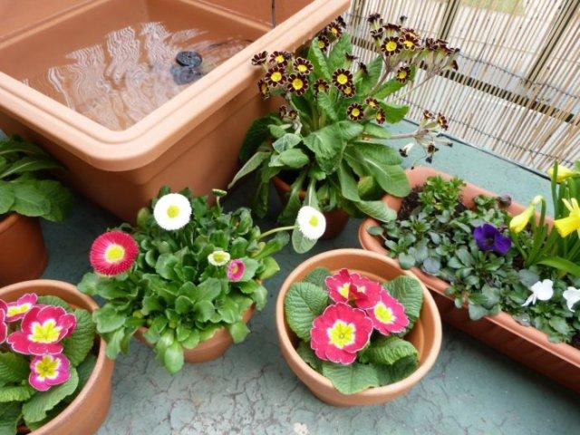 σχεδιαστικές ιδέες μπαλκονιού με φυτά14