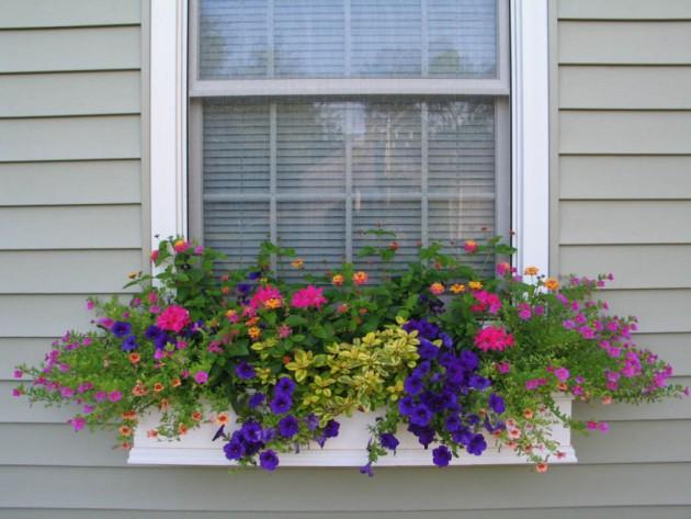 Ιδέες με ζαρτινιέρες λουλουδιών για τα παράθυρα σας2