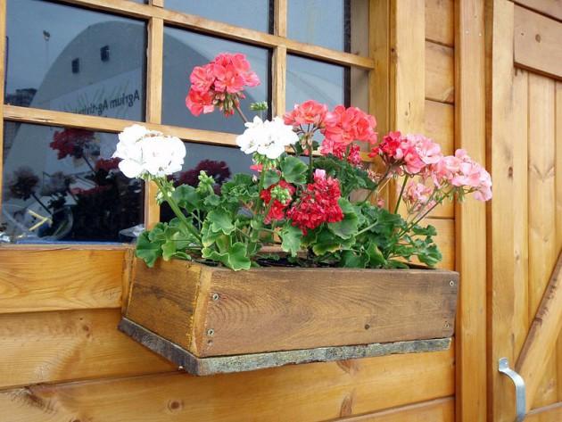 Ιδέες με ζαρτινιέρες λουλουδιών για τα παράθυρα σας9