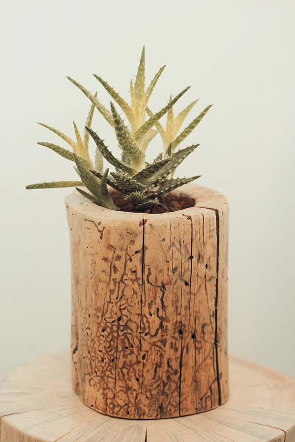 βάζα από κούτσουρο δέντρου11
