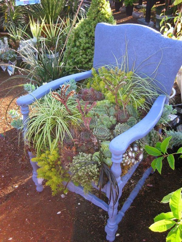 παλιές καρέκλες σε γλάστρες κήπου2