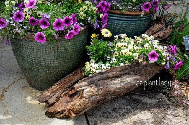 κούτσουρα και κορμούς σε όμορφές DIY γλάστρες8