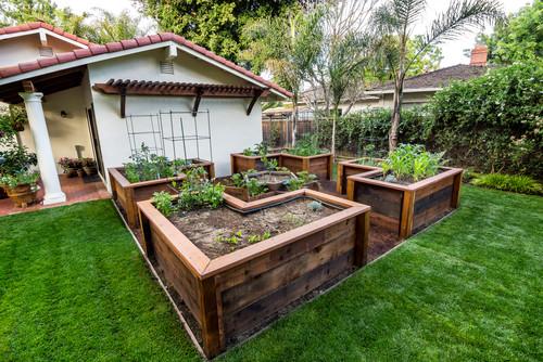 Ιδέες με Φανταστικούς λαχανόκηπους25