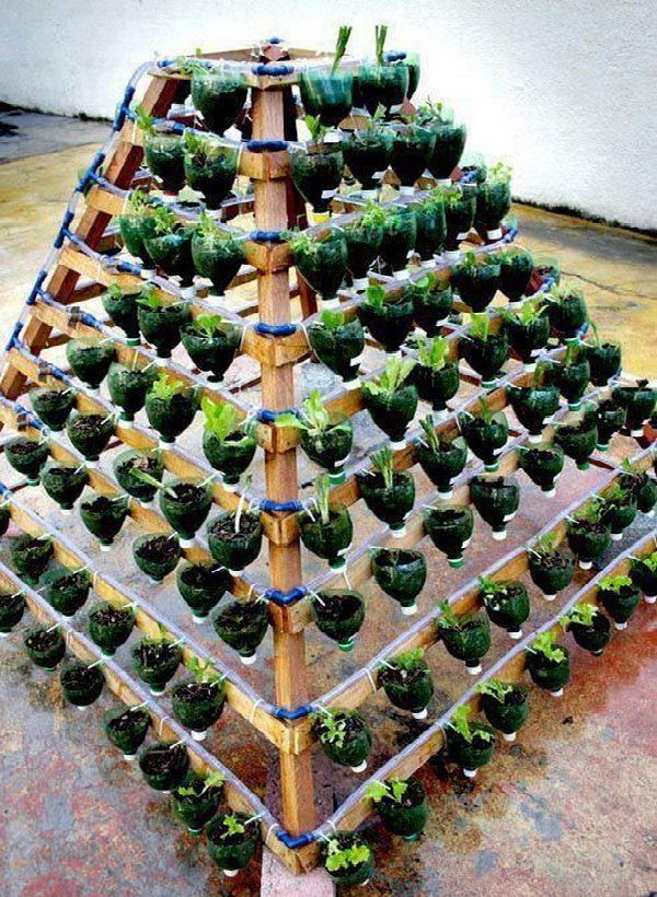 DIY γλάστρες από πλαστικά μπουκάλια3