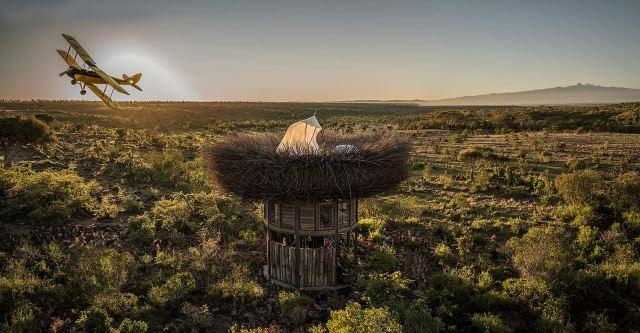 NAY PALAD Bird Nest3