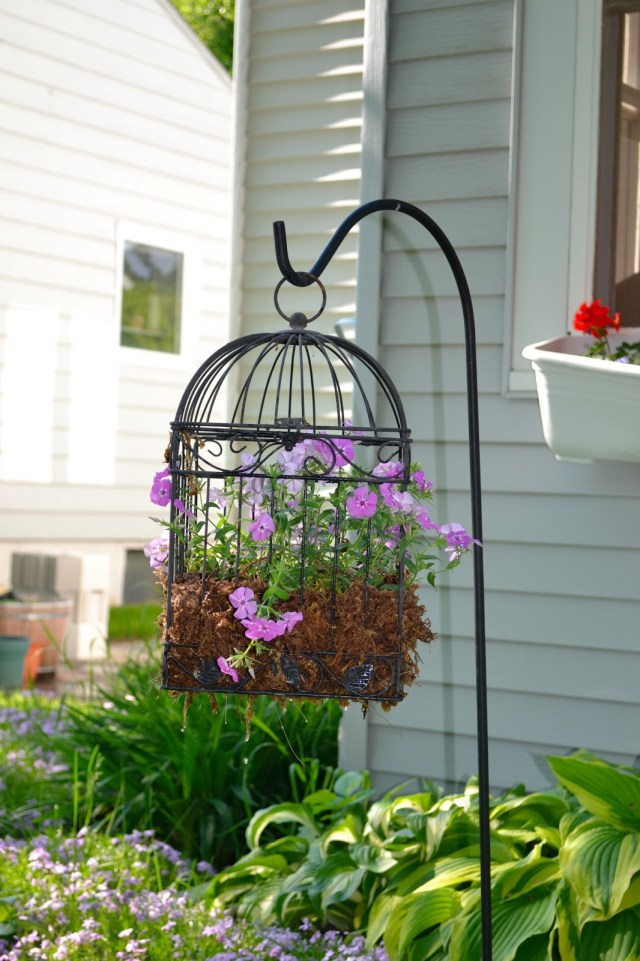Κλουβιά πουλιών σαν γλάστρες1