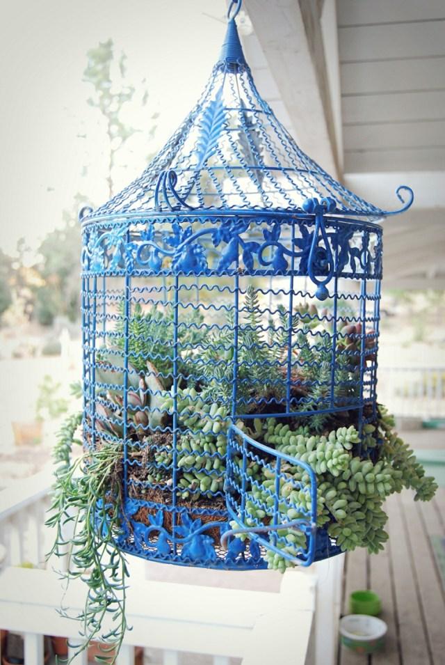 Κλουβιά πουλιών σαν γλάστρες10