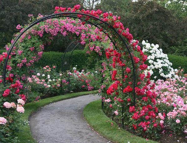 ιδέες από καμάρες κήπου1