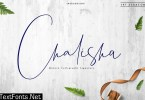 Chalisha Modern Calligraphy 2892210