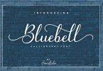 Fontbundles - Bluebell - Calligraphy Font 110429