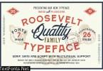 Roosevelt Font Family (Font Bundle) 3420351