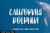 California Dolphin Font