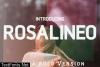 Rosalineo Extra-Bold Font
