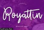Royattin Modern Calligraphy Monoline Font