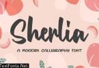 Sherlia - a Modern Calligraphy Font