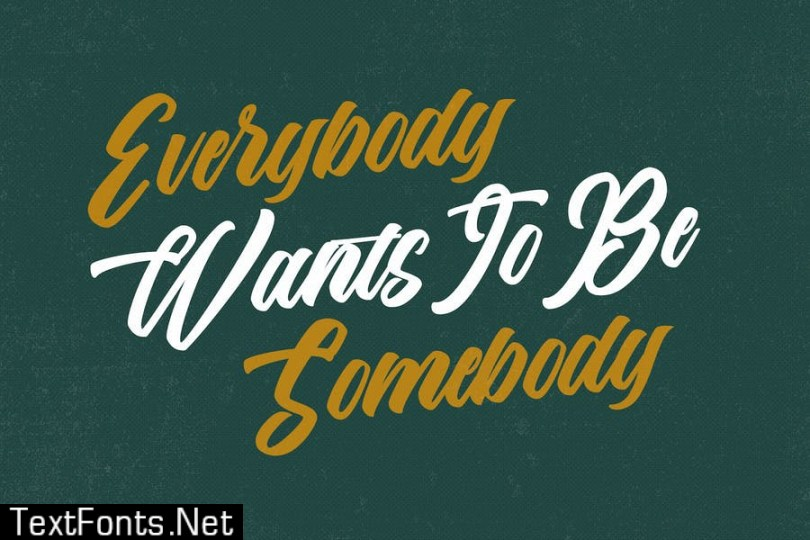 The Anthelope - Retro Bold Script Font
