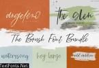 The Brush Font Bundle 4505486