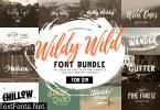 Wildy Wild Font Bundle! 4233060