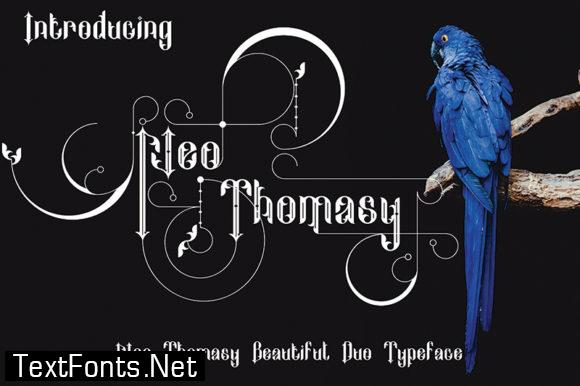 Neo Thomasy Font
