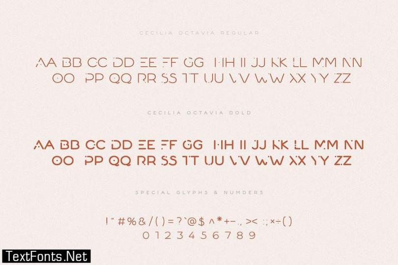Cecilia Octavia - Minimal Sans Serif