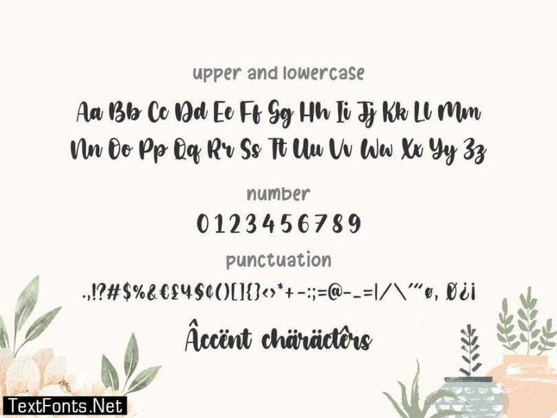 Glamori YH - Bold Script Modern Font