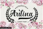 Ardina Script 1374931