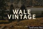 Wale Vintage Font