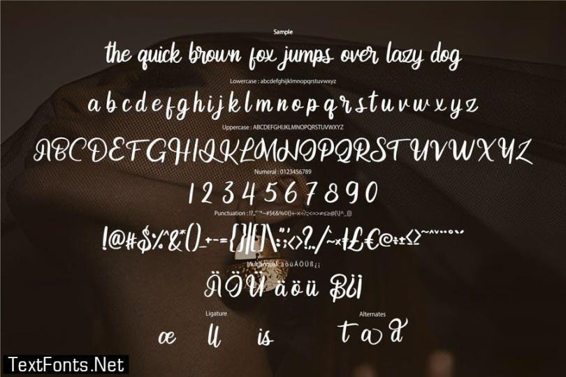 Andetia   Modern Script Font
