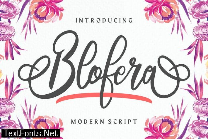 Blofera | Modern Script Font