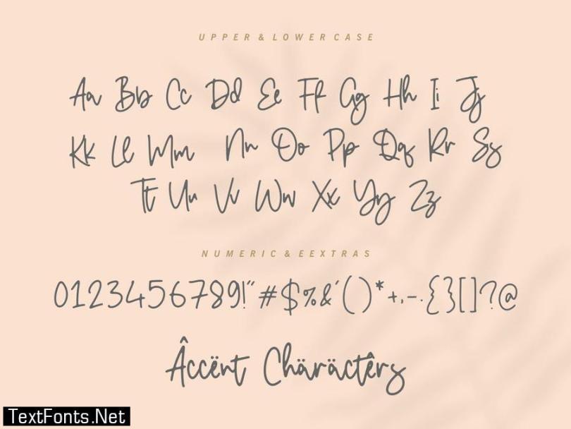 Double Diamond Script Font YH