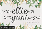 Ellie Gant Family Font