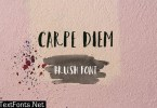 Carpe Diem Brush Font