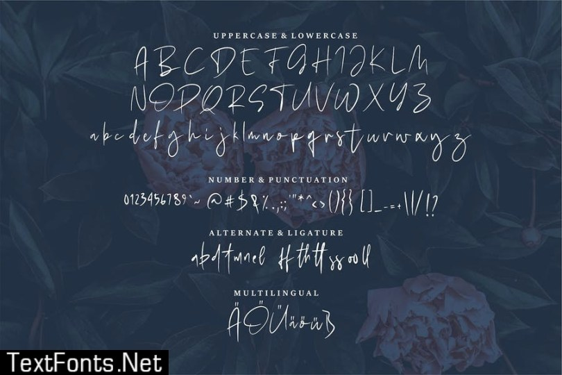 Herbert | A Modern Handwritten Font