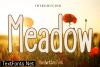 Meadow Font