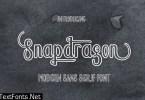 Snapdragon Font
