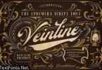 Veinline Font