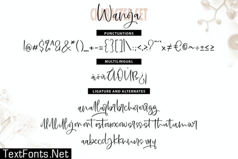 Wanoja | Unique Handwriting Script Font