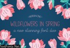 Wildflowers in Spring Font Duo
