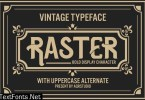 Raster - Vintage Blod Display Font