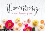 Bloomsberry Font Family