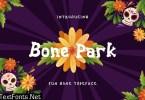 Bone Park Fun Display Font