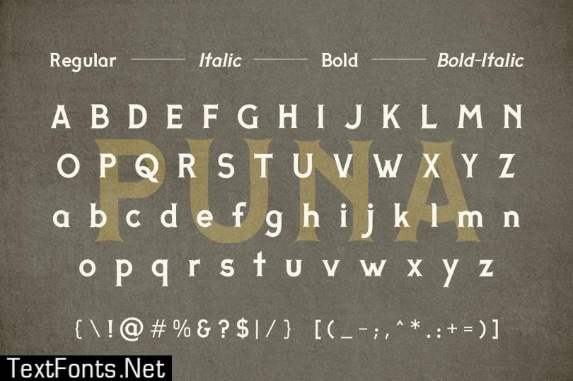 Adhreza's Bundle + PUNA Typeface 475232