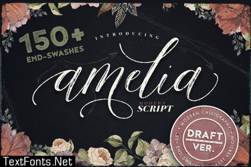 Amelia Script - Draft Version 544355
