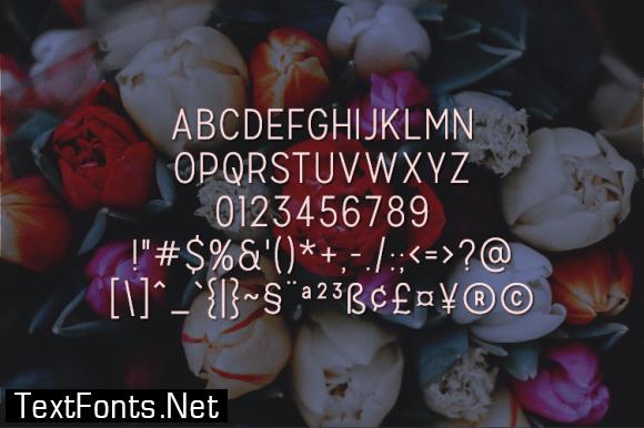 Lovert Font