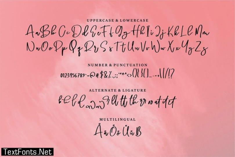 Shaniga   A beauty Script Font