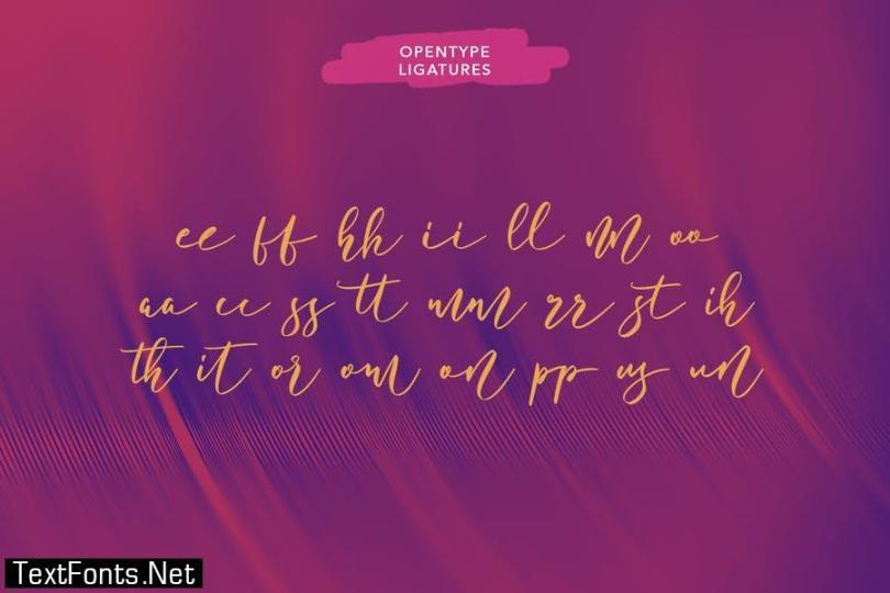 Bottomvega Beauty Script Font