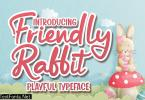 DS Friendly Rabbit - Playful Typeface