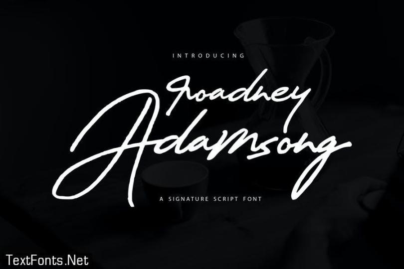 Roadney Adamsong | Signature Script Font