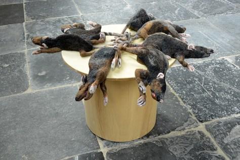 Rattenkoning-1